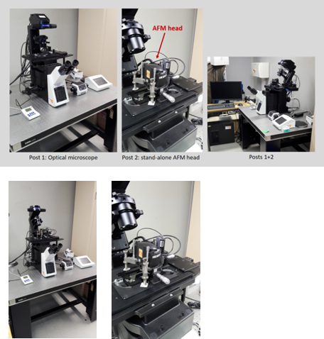 Physique et nano-micro Ingénierie pour le Vivant 2