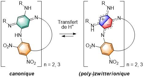 Les Azacalixarenes : une nouvelle famille de macrocycles (poly-)zwitterioniques 1